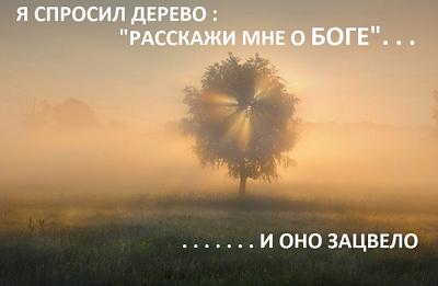 5ом8.png