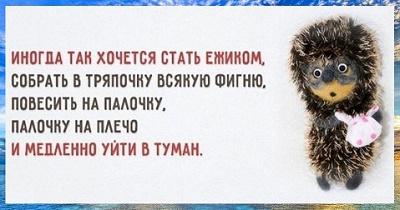9гл1.jpg