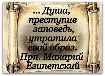 Ysa6qRP_oTA.jpg